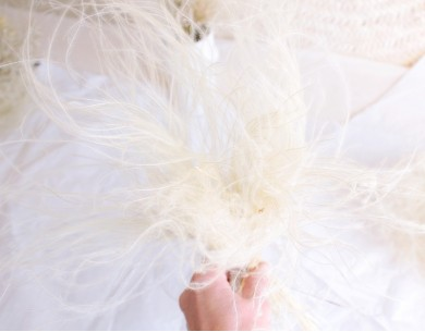 Bouquet cheveux d'ange séchés - Stipa